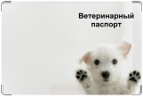 Обложка на ветеринарный паспорт, Впустите!