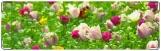 Визитница/Картхолдер, тюльпаны поле