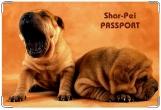 Обложка на ветеринарный паспорт, шарпей