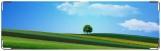 Визитница/Картхолдер, поле и дерево