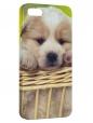 Чехол для iPhone 5/5S, щеночек