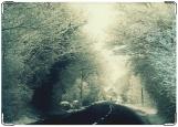 Блокнот, winter