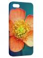 Чехол для iPhone 5/5S, Оранжевый цветок