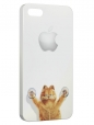 Чехол для iPhone 5/5S, kotik