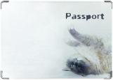 Обложка на паспорт, Кошечка