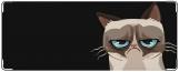 Обложка на студенческий, кот