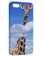 Чехол для iPhone 5/5S, Жираф