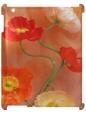 Чехол для iPad 2/3, Цветы
