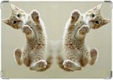 Обложка на паспорт с уголками, Пяточки котенка