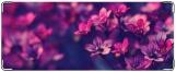 Кошелек, Цветы