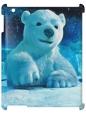 Чехол для iPad 2/3, медвежонок