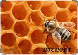 Обложка на паспорт, пчелка