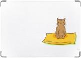 Обложка на паспорт с уголками, The cat