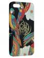 Чехол для iPhone 5/5S, Экзотика