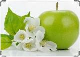Обложка на паспорт с уголками, свежесть яблоко