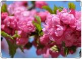 Обложка на паспорт с уголками, Цветы сакуры