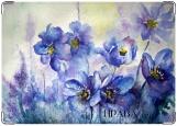 Обложка на автодокументы с уголками, цветы в голубом