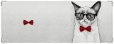 Обложка на зачетную книжку, Grumpy Cat
