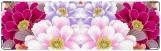 Визитница/Картхолдер, Цветочная поляна
