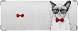 Обложка на студенческий, Grumpy Cat
