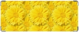 Кошелек, Желтые цветы.