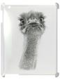 Чехол для iPad 2/3, Страус