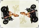 Обложка на автодокументы с уголками, мото