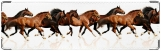Визитница/Картхолдер, Бег коней