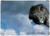 Обложка на паспорт с уголками, страус