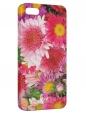 Чехол для iPhone 5/5S, Цветы полевые