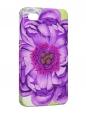 Чехол iPhone 4/4S, Цветок