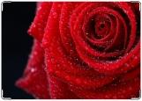 Обложка на паспорт, роза