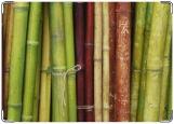Обложка на паспорт с уголками, бамбуки