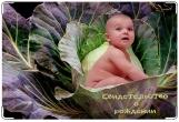 Обложка для свидетельства о рождении, Пупсик