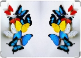 Обложка на паспорт с уголками, Райские бабочки