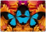 Обложка на автодокументы с уголками, Герберы и бабочка