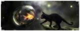 Обложка на зачетную книжку, кошка