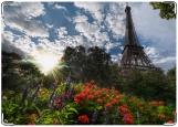 Обложка на паспорт, Мечта о Париже