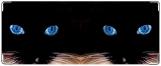 Обложка на студенческий, Кошачьи глазки