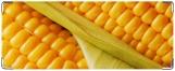 Обложка на студенческий, Кукуруза