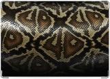 Обложка на паспорт с уголками, Змея