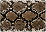 Обложка на паспорт с уголками, Nature: Snake Skin