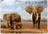 Обложка на паспорт с уголками, Слоны