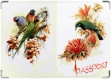 Обложка на паспорт, Птички