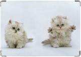 Обложка на автодокументы с уголками, котята