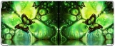 Кошелек, Изумрудная Бабочка
