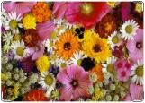 Обложка на паспорт с уголками, Полевые цветы