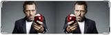 Визитница/Картхолдер, Доктор Хаус с яблочком