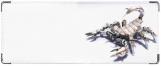 Кошелек, скорпион