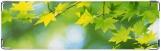 Визитница/Картхолдер, листья